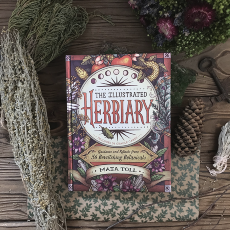 "Maia Toll ""The Illustrated Herbiary"""